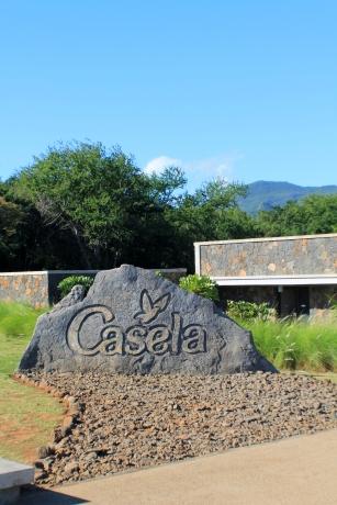 Casela 02